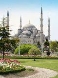 C-200 Стамбул. Голубая мечеть 200х270 Арабский мир