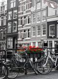 B-014 Велосипеды 200х270 Черно-белое