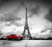 D-086 Красный авто 300х270 Черно-белое