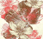 C-046 Цветы иллюстрация 300х270 Цветы
