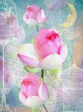 D-111 Сказочный цветок 200х270 Цветы