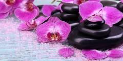 L-068 Орхидеи спа 200х100 Цветы