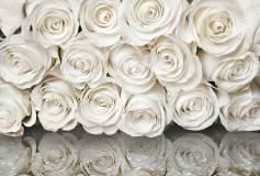 P-090 Розы с отражением 400х270 Цветы