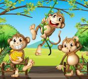C-075 Три обезьянки 300х270 Детство