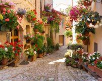 C-363 Италия в цветах 300х238 Города - Страны