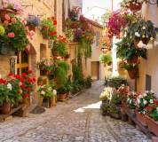 C-403 Италия в цветах 300х270 Города - Страны