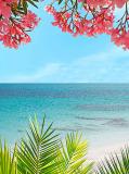 D-002 Тропический пейзаж 200х270 Море • Океан