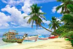 L-039 Тропический пляж 400х270 Море-Океан