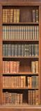 A-067 Книжный шкаф 100х270 Объемные