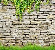 D-038 Каменная стена 300х270 Текстуры