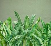 T-288 Банановые листья 300х270 Тропики