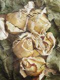 L-019 розы 200х270 Живопись