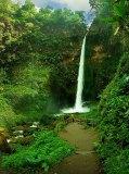 C-018 Тропический водопад 200х270 Природа