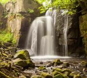 C-092 Водопад в реликтовом лесу 300х270 Природа
