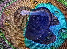 C-334 Перо павлина 200х147 Природа