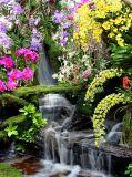 D-084 Водопад в цветах 200х270 Природа