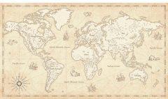 МФ10310 Карты