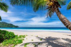 МФ9503 Моря и пляжи