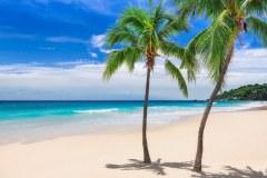 МФ9516 Моря и пляжи