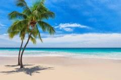 МФ9517 Моря и пляжи