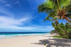 МФ9523 Моря и пляжи