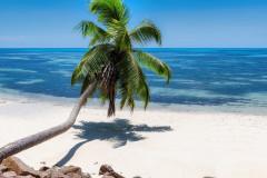 МФ9508 Моря и пляжи