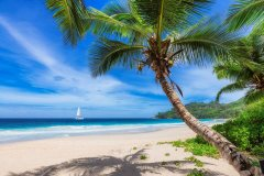 МФ9515 Моря и пляжи