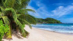 МФ9519 Моря и пляжи