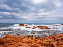 МФ9529 Моря и пляжи