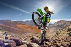 МФ10134 Спорт