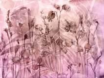 4-2  образец 400х300 рассвет закат роз Aquarelle