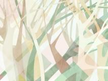 21083 Banyan tree