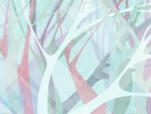 21084 Banyan tree