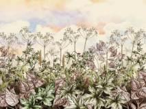 21844 Botanica