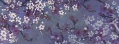 21064_21065 Sakura