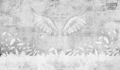 17401_angel wings_89360473 TeenDream 2017