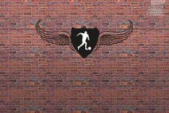 17408_Football wings TeenDream 2017