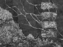 6 образец чб инверс Wabi Sabi
