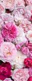 MRB-0202 Цветы рулонные шторы