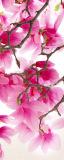 MRB-0215 Цветы рулонные шторы