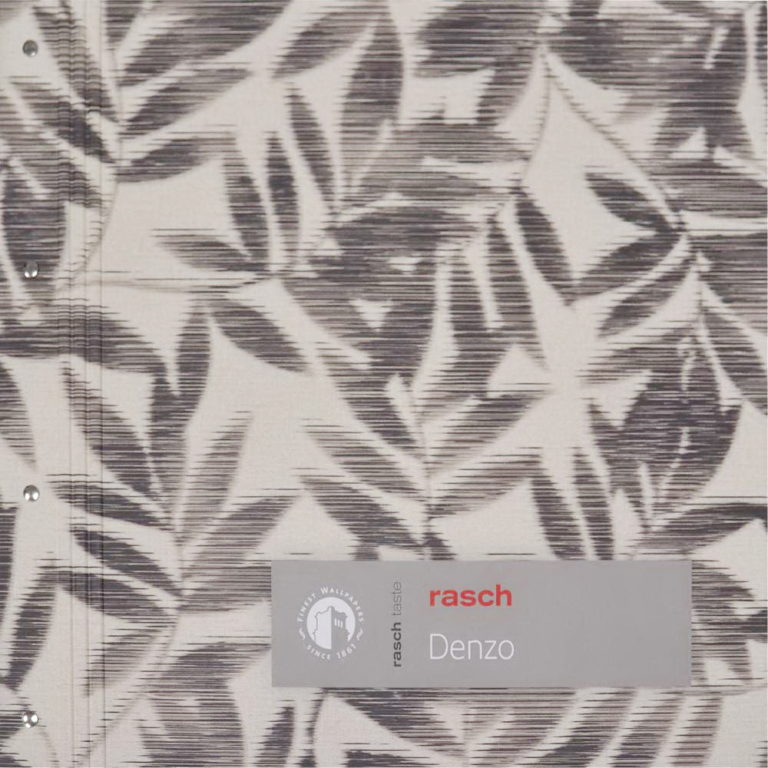 обложка Denzo Rasch