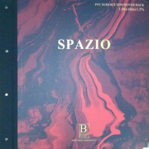 обложка Spazio Bernardo Bartalucci