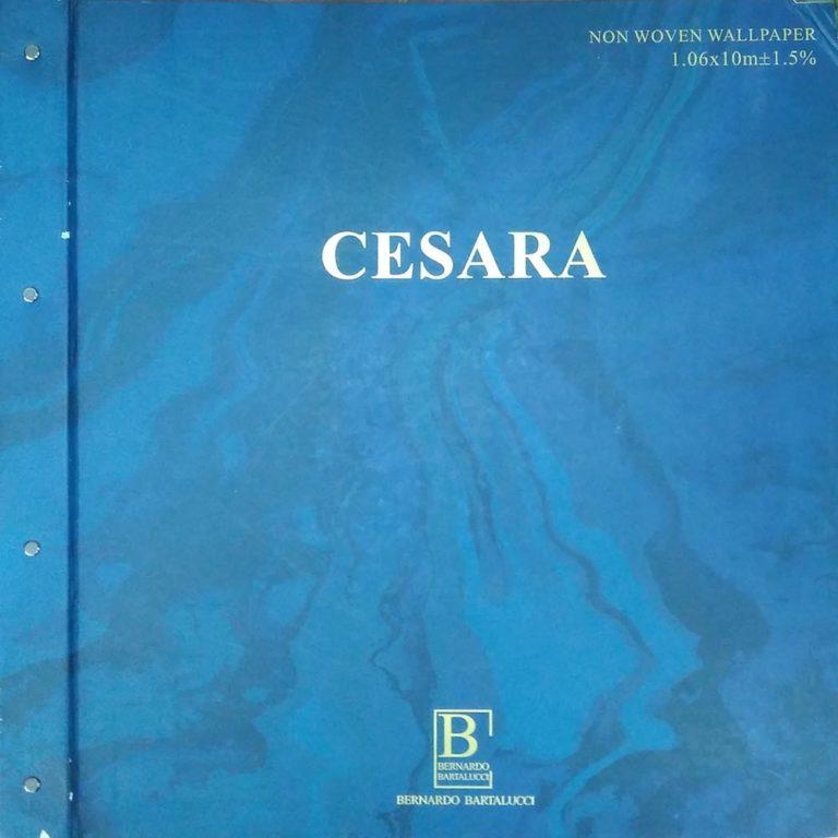 Обложка Cesara Bernardo Bartalucci