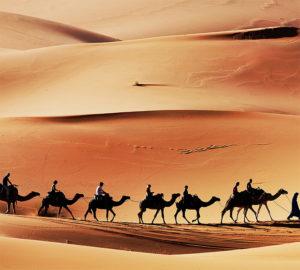 C-171 Пустыня 300х270 Арабский мир