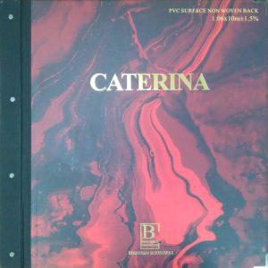 Обложка Caterina Bernardo Bartalucci