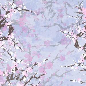 21071 Sakura