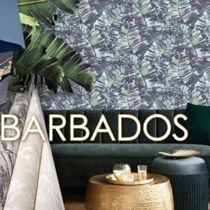 Обложка Barbados Victoria Stenova