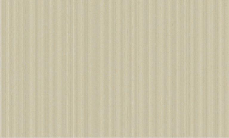 60101-3 Platinum Bruno Zoff