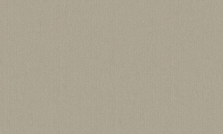 60101-4 Platinum Bruno Zoff