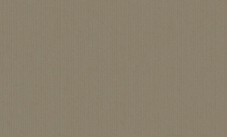60101-5 Platinum Bruno Zoff